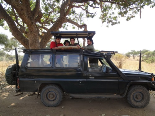 Our safari SUV