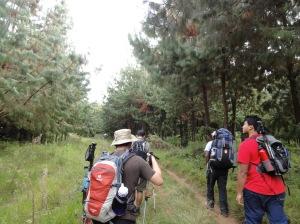 Hike to Simba Camp