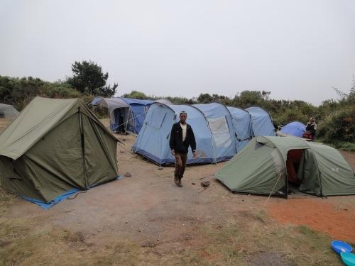 Simba Camp