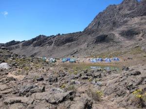 Mawenzi Camp (4302m)