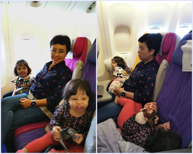 Thai Airways flight